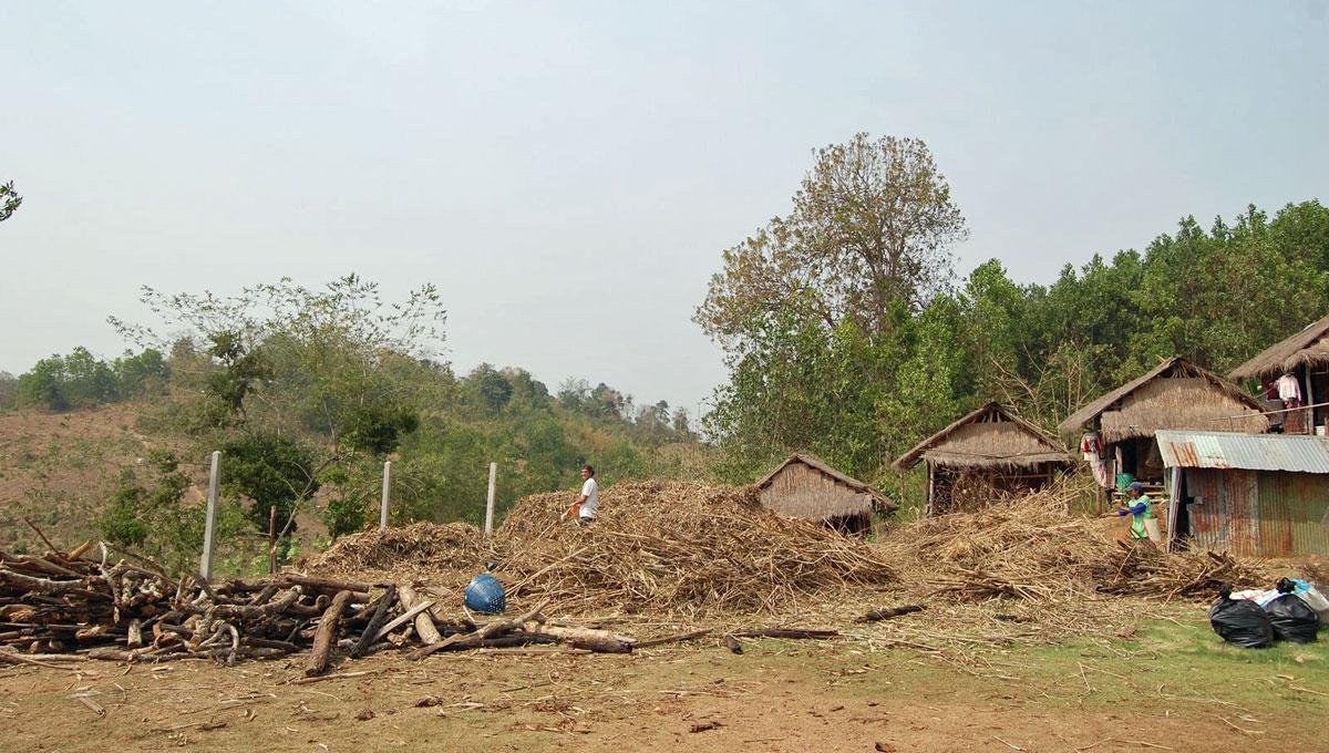Trabalho de campo na Tailândia