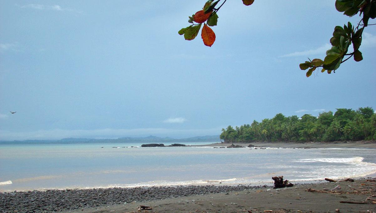 praia de pavones costa rica
