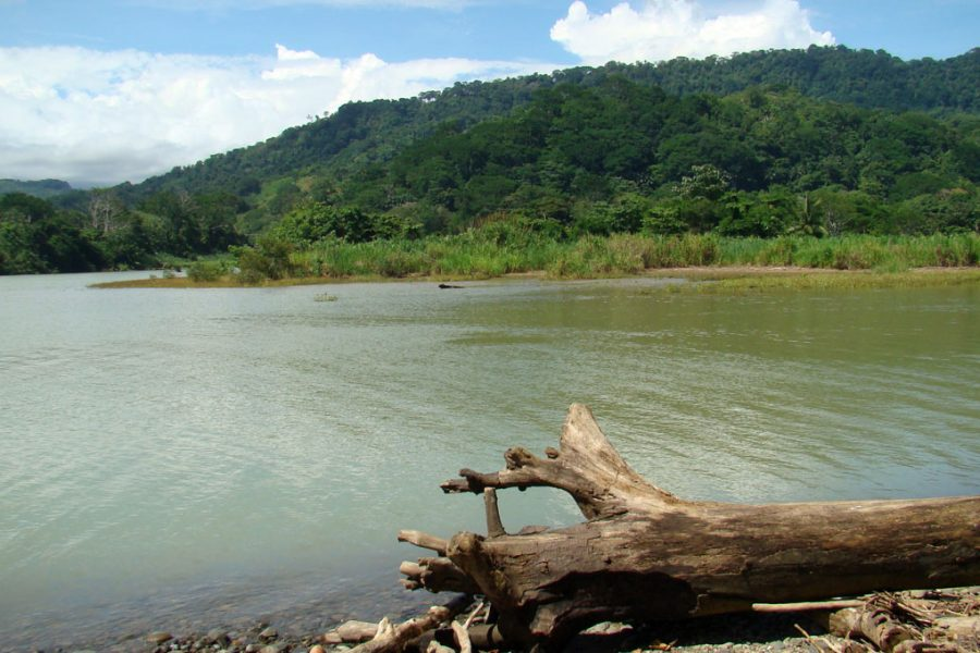 rio em dominical costa rica