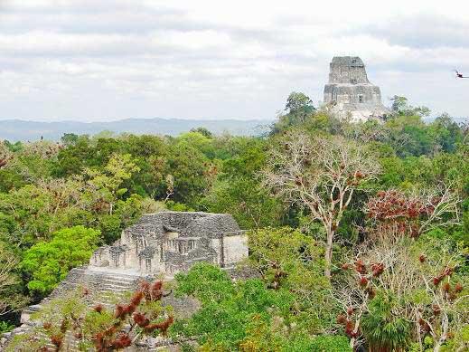 Vista de Tikal, Guatemala